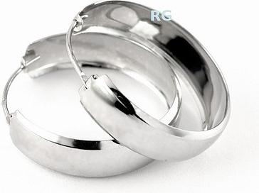 Náušnice stříbrné kruhy 31136-25BG